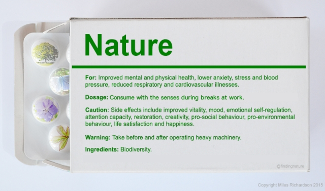 Nature for Workplace Wellbeing
